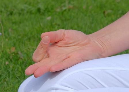 Ananda Yogalehrerausbildung
