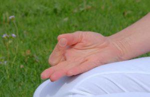 Chin Mudra - Ananda Yoga Wien