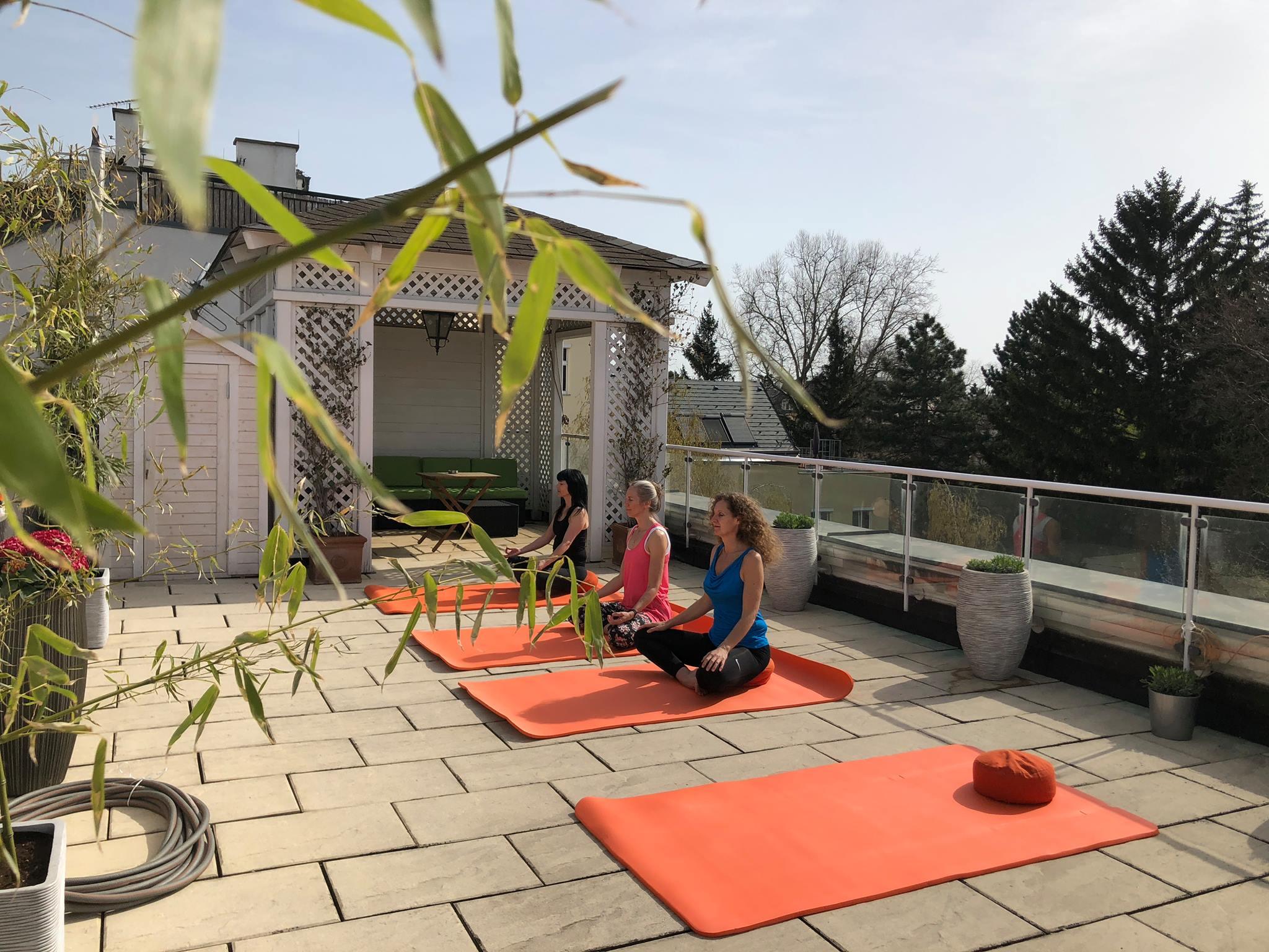 KURS / Ganzheitliches Hatha Yoga & Energetic Healing (auch Schnuppereinheit für ANANDA Yogalehrerausbildung) / Donnerstag / 1130 Wien
